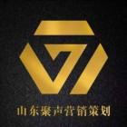 山东省聚声置业营销策划有限公司
